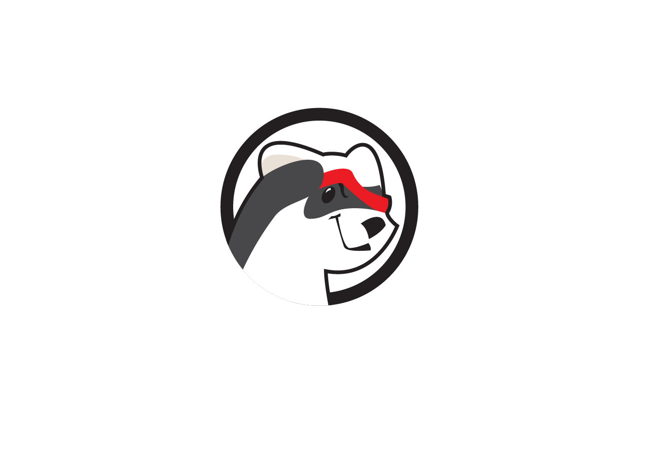 blindferret_logo.png